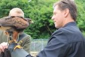 Ireland's School of Falconry Hawk Walk